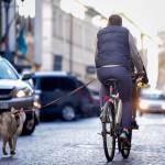 Europos judrumo savaitė: į darbą atvykime dviračiu!
