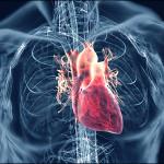 Sergamumas širdies ir kraujagyslių ligomis Lietuvoje įgauna epideminį mastą