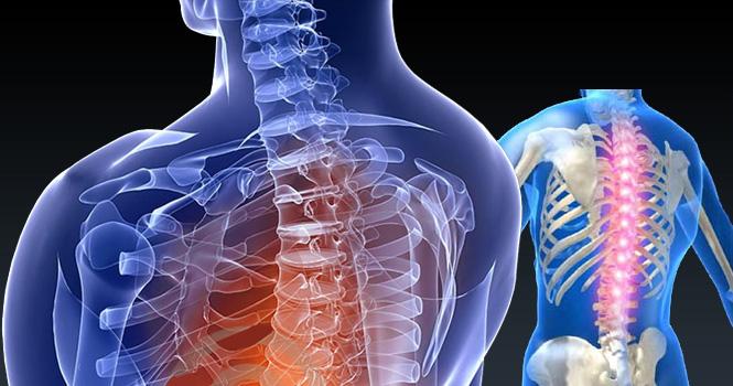 Daugelis specialistų prie nugaros skausmų priskiria dar ir kaklo bei pečių skausmus ir krūtininės stuburo dalies skausmus, pabrėždami išskirtinę stuburo svarbą šių skausmų atsiradimui ir plitimui. (Asociatyvi nuotr.)