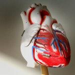 Siūloma steigti specializuotus širdies nepakankamumo ir aritmijos priežiūros kabinetus