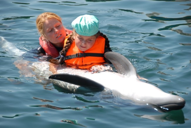 Šiandien gyvūnų terapijos specialistai į pagalbą įtraukia ne tik šunis, bet ir kates, triušius, žirgus, delfinus...