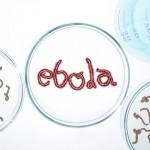 Kaip elgtis, jei į šalies uostą atvyks Ebolos virusu užsikrėtęs laivo keleivis?