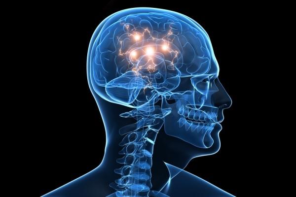 Stresas taip pat veikia kamienines ląsteles, slopindamas joms priėjimą prie priešakinės kaktinės galvos smegenų žievės dalies, kuri taip pat atsakinga už sudėtingą mastymą bei socialinį bendravimą.  (Asociatyvi nuotr.)