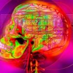 Ką rodo aukštas IQ, ir kada pradėti jaustis kvailam