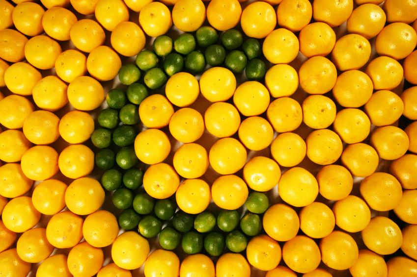 Kovoje su infekcijomis nepamainomas yra vitaminas C, kuris stiprina kraujagyslių sieneles ir neleidžia infekcijai plisti, taip pat ežiuolė. (Asociatyvi nuotr.)