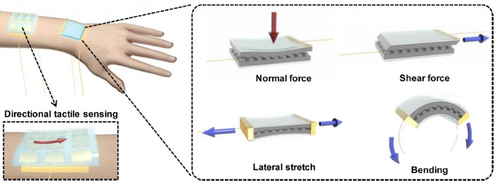 """Sintetinės biologijos pavyzdys - """"elektroninė oda"""", pagaminta žvelgiant į mūsų pačių odos veikimą, kuri geba jausti ne tik spaudimo jėga, bet ir nustatyti šios jėgos kryptį."""