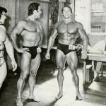 Kodėl vyrams testosteronas toks svarbus?