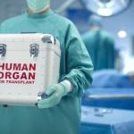 Donorų matematika: organus transplantuosime ar leisime pūti?