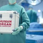 Organų donorystės ir transplantacijos procese dalyvavo 8 žmonės