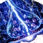 Epilepsija – daugiau nei traukuliai