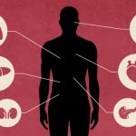 Kodėl artimieji dažniausiai nesutinka aukoti mirusiojo organų donorystei?