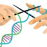 Dirbtinis apvaisinimas naudojant trijų tėvų DNR gali padėti išvengti mitochondrinių ligų