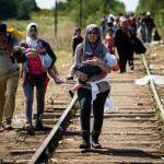 Kokias sveikatos problemas sukelia pabėgėlių krizė?