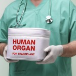 Velso gyventojai automatiškai taps organų donorais