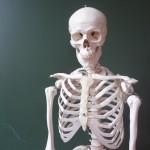 Mokslininkų rankose – galimybė visiškai atstatyti žmogaus kaulus