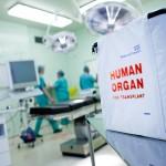 Praėję metai – sėkmingiausi organų donorystės metai Lietuvoje