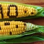 Privalės aiškiau įspėti apie genetiškai modifikuotą maistą