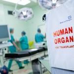 Donoras tapo multiorganiniu – išgelbėjo net 4 žmonių gyvybes