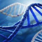 Mutavusi žmonija: mokslininkai žmogaus kūne atrado senovinius virusus